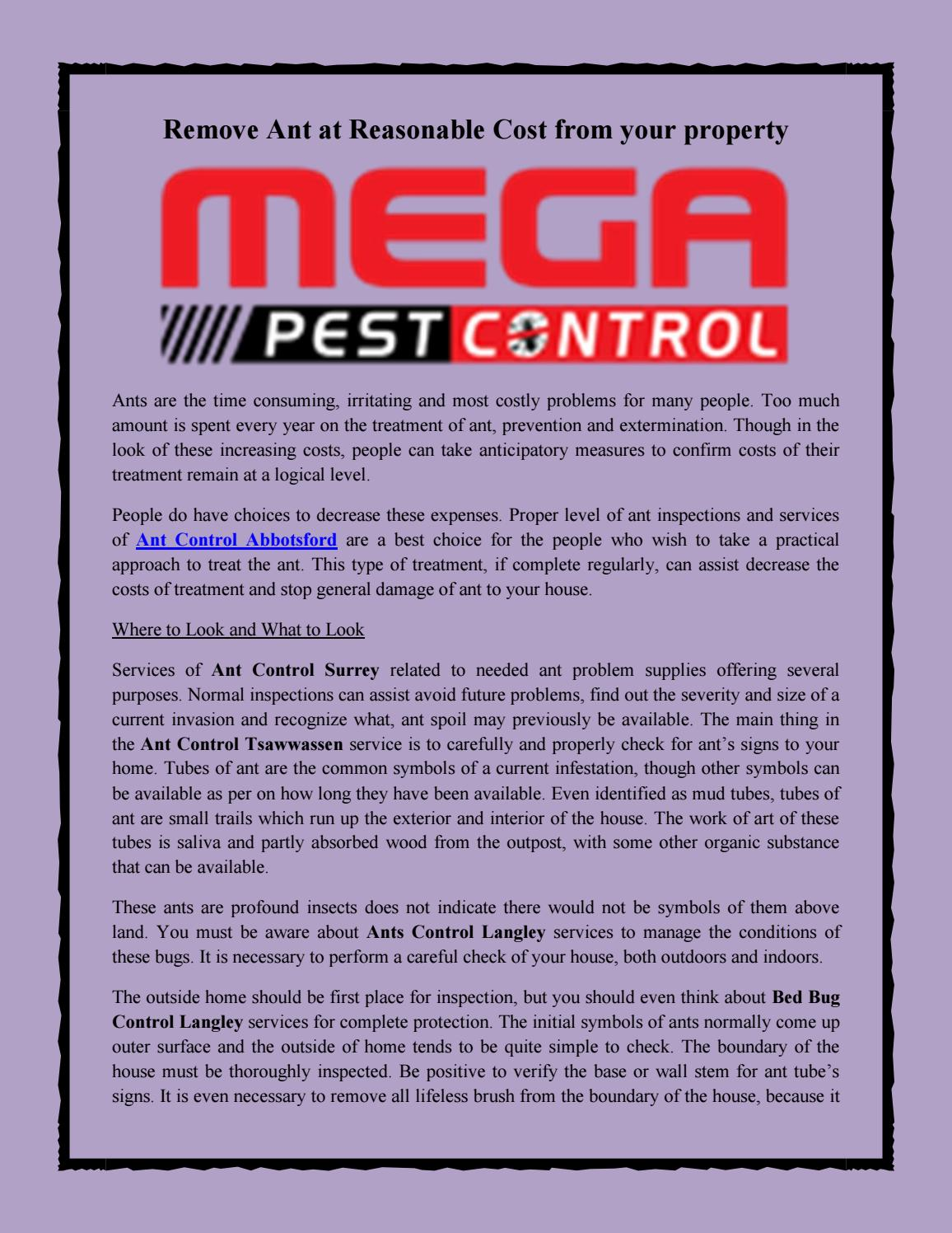 Remove Ant At Reasonable Cost From Your Property By Megapest Control Issuu