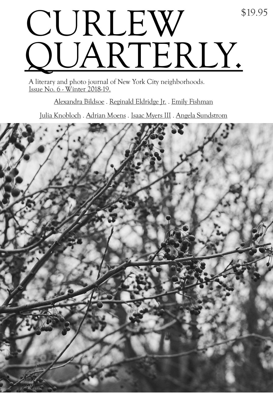 Curlew Quarterly - Issue No  6 - Winter 2018-19 by