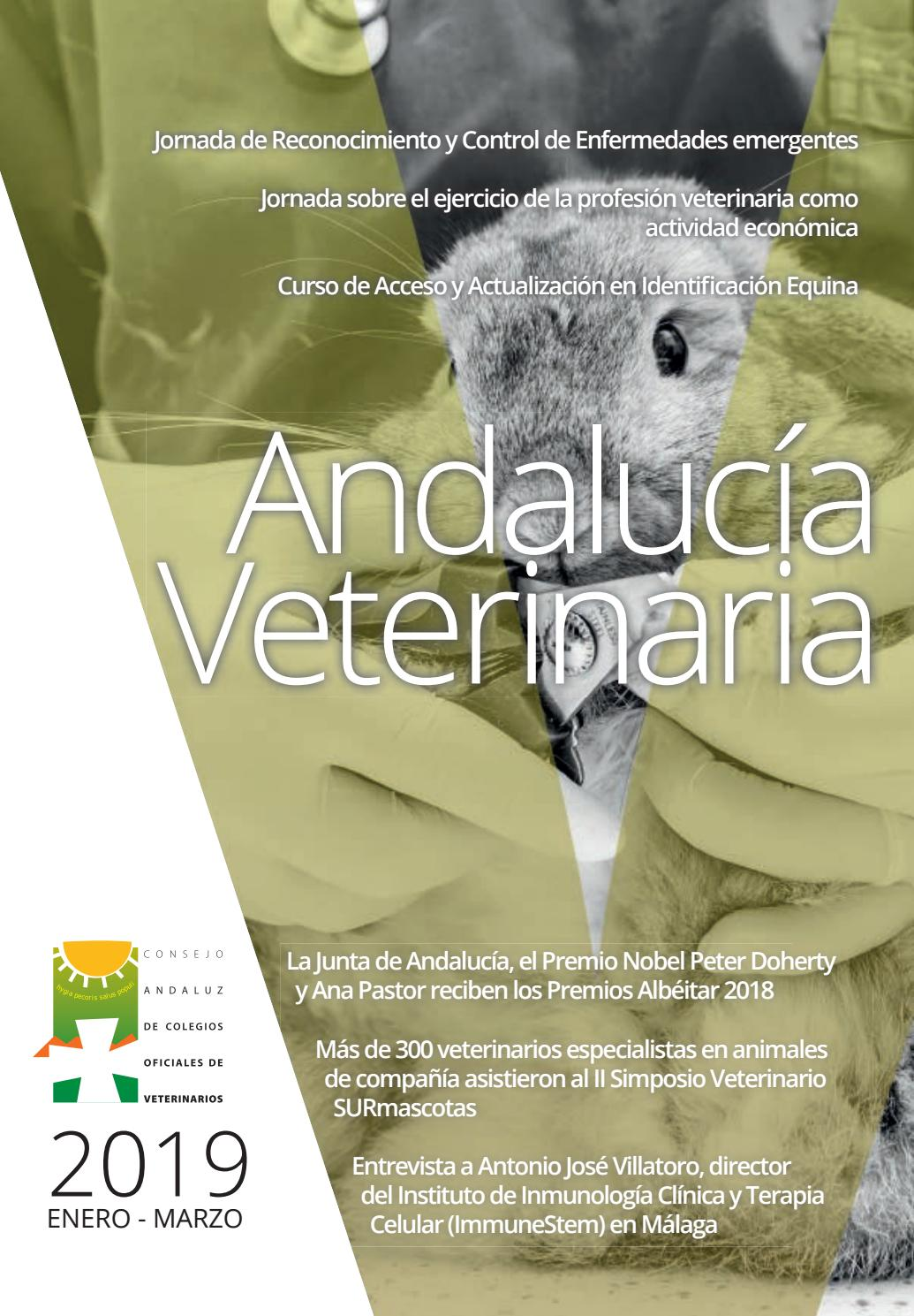 29 Andalucía Veterinaria Ene Mar 2019 By Consejo Andaluz
