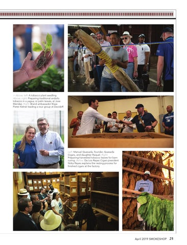 Page 25 of Procigar Festival 2019: Dominican Cigars  Maintain their Luster