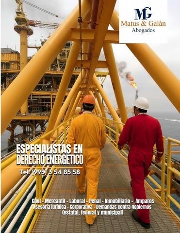 Page 4 of Especialista en Derecho Energético