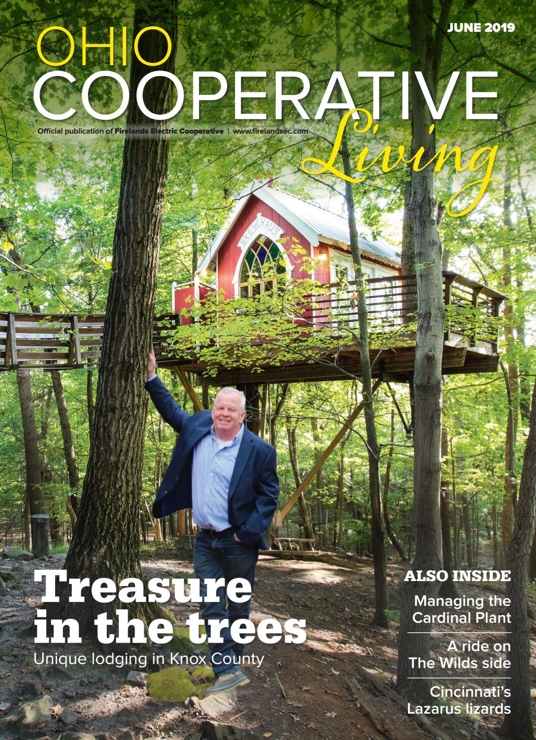 Ohio Cooperative Living - June 2019 - Firelands by Ohio