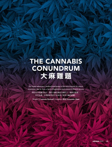 Page 107 of The Cannabis Conundrum