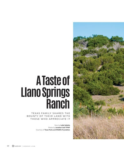 Page 44 of A Taste of Llano Springs Ranch