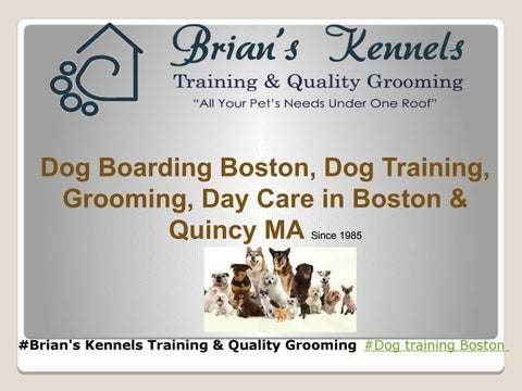 Dog Boarding Boston by Brian's Kennels, Training & Quality