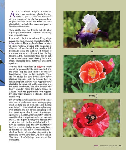 Page 125 of Plant Picks