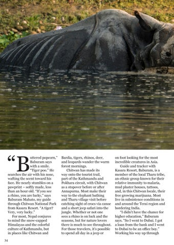 Page 34 of Chitwan: Searching for Unicorn Rhinos in Nepal