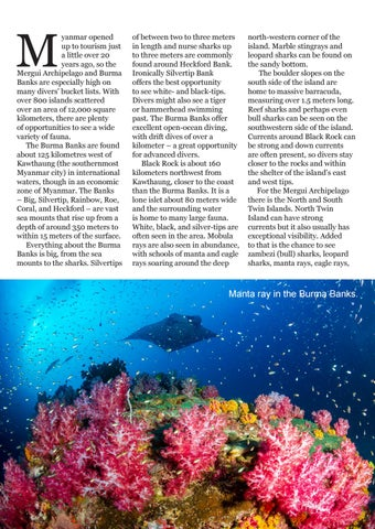 Page 44 of Diving Mergui and the Burma Banks