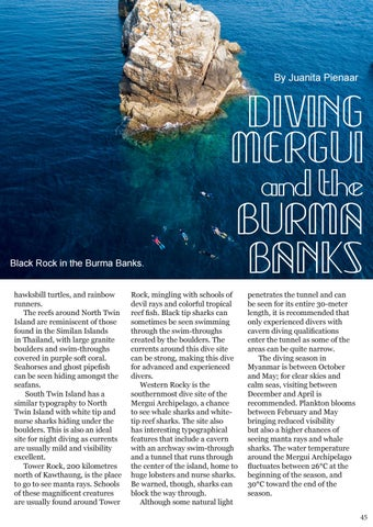 Page 45 of Diving Mergui and the Burma Banks
