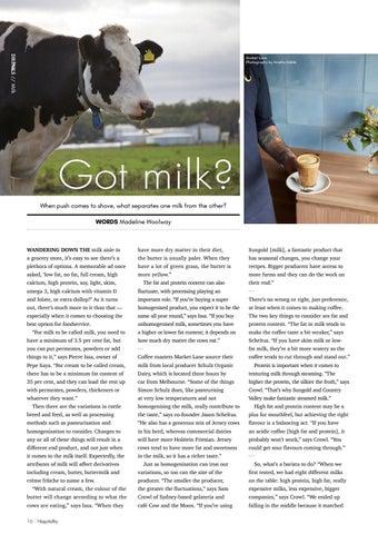 Page 16 of Got milk?