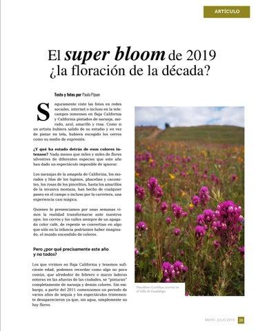 Page 21 of El super bloom del 2019 ¿la floración de la década?