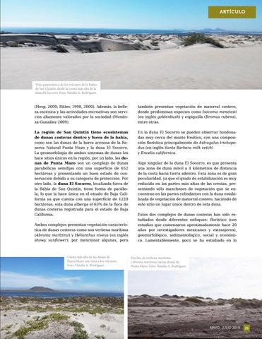 Page 27 of Punta Mazo y El Socorro: dunas costeras únicas en San Quintín