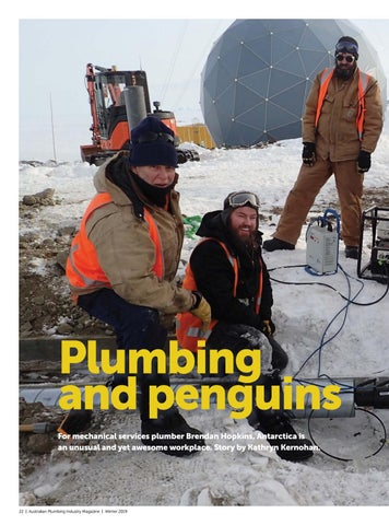 Page 22 of Plumbing and penguins