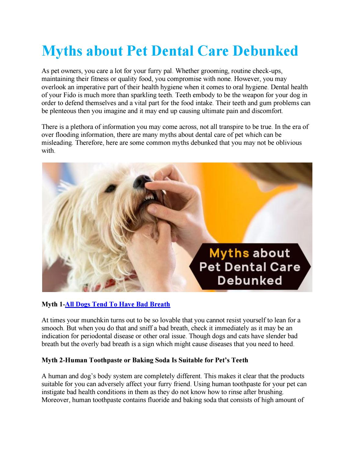 Myths about Pet Dental Care Debunked by VetSupply - issuu