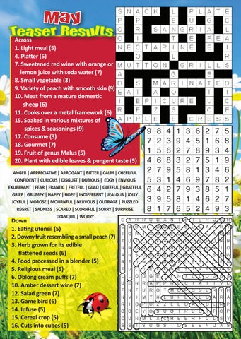 Puzzle Page May 2019 by Kenneth Flannagan - issuu