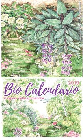 Birre Medie Calendario.Bio Calendario 2019 By Edizioni Laboratorio Verde Issuu
