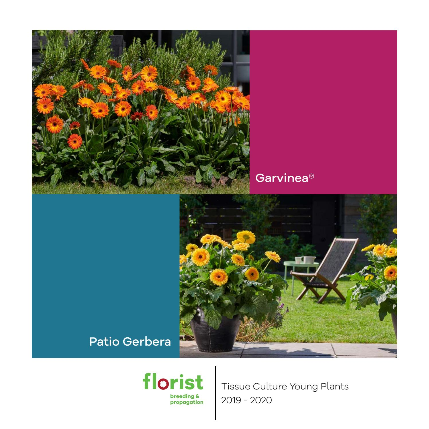 plants and flowers catalog - HD 1497×1497