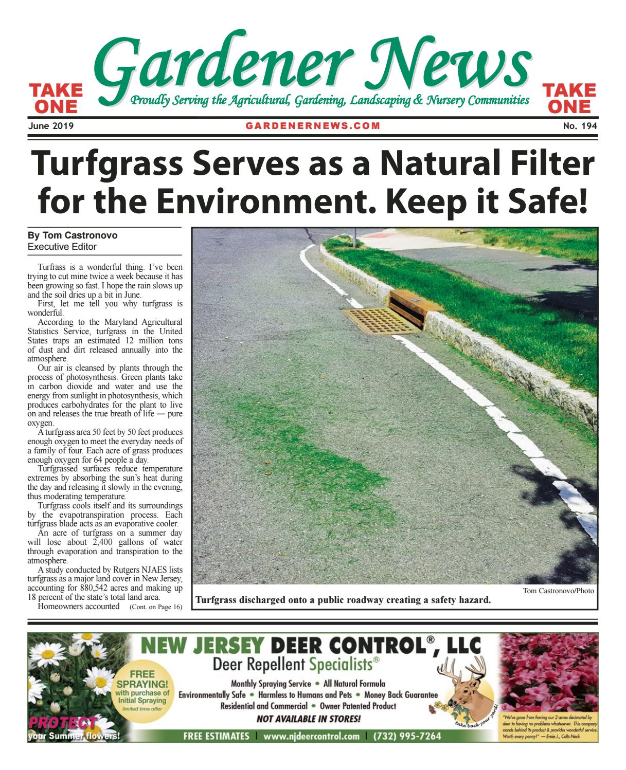 Gardener News June 2019 by Gardener News issuu