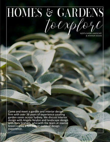 Page 121 of Garden and Interiors inspo with Joanne Green Landscape & Interiors