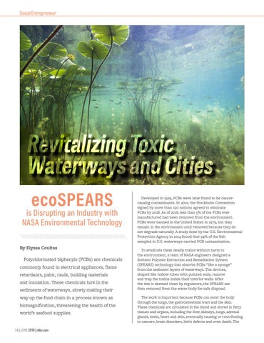 Page 56 of Revitalizing Toxic Waterways and Cities