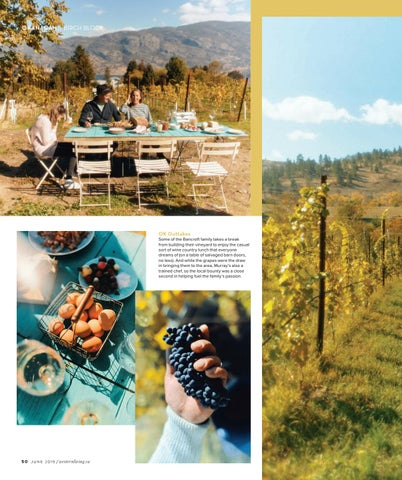 Page 50 of How to Build a Vineyard From Scratch