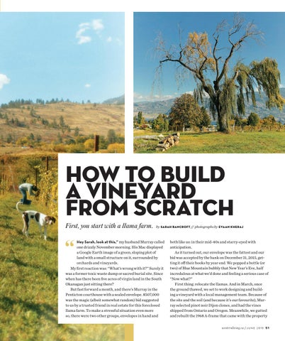 Page 51 of How to Build a Vineyard From Scratch
