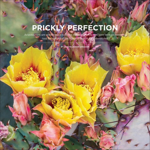 Page 86 of Prickly Perfection