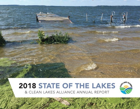 Holiday Magic On Lake Wingra Pickup >> Greater Madison Lake Guide By Clean Lakes Alliance Issuu