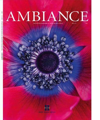 Ambiance By Barino Consulting Issuu