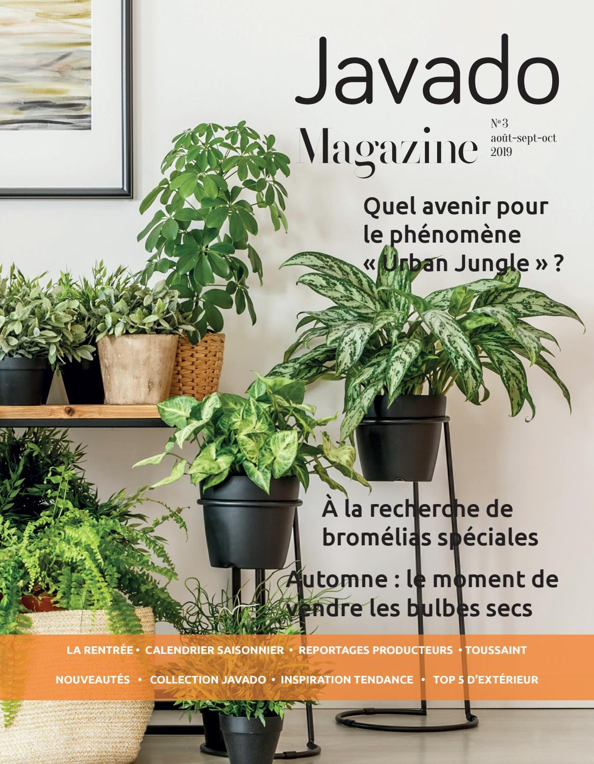 Doit On Deterrer Les Oignons De Tulipes javado magazine #3 frwbegroup - issuu