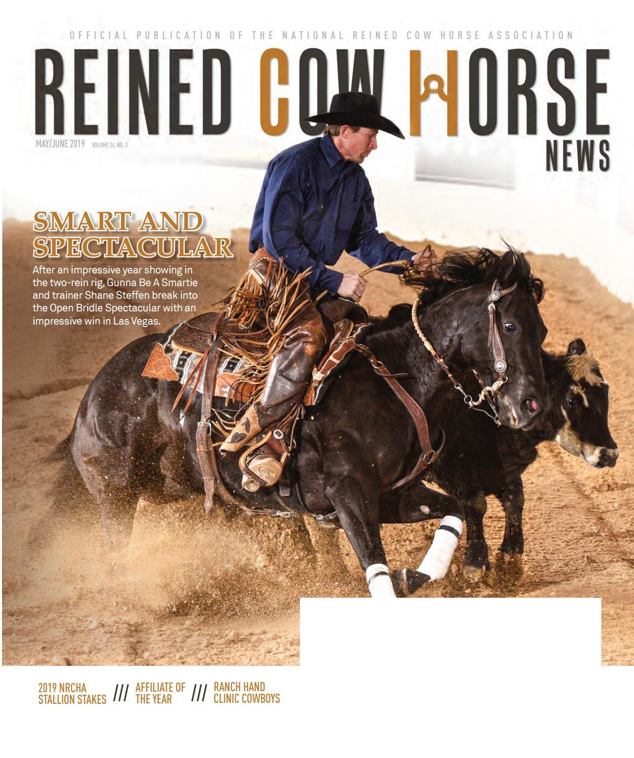 Clinton Anderson  HORSEMANSHIP 101 6 DVD/'s