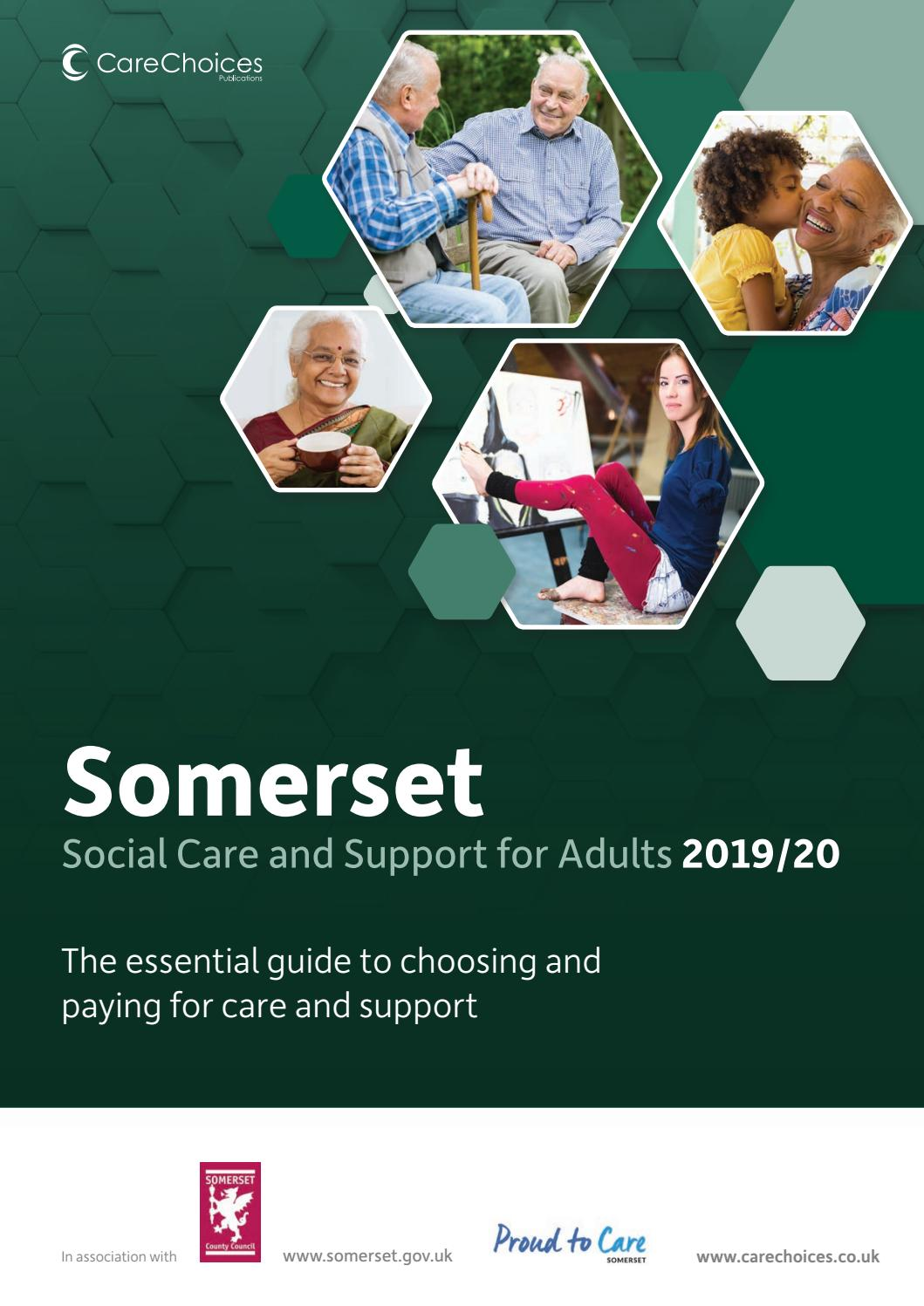 Somerset Social Care and Support for Adults 2019/20 by Care