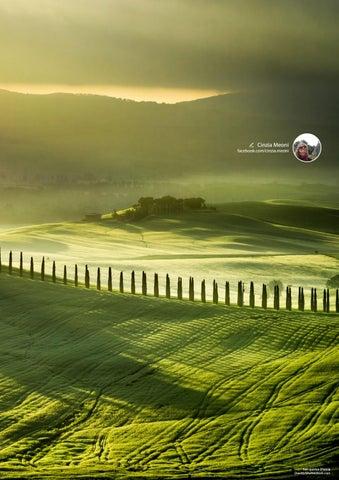 Page 141 of Toscana Val d'Orcia, paesaggio che diventa arte