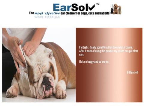 Dog Ear Drops by earsolvonline - issuu