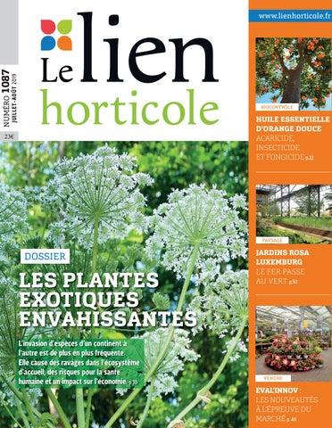 Lien Horticole 1087 By Laoubi Sarah Issuu