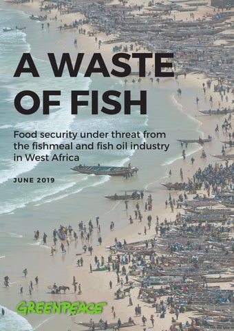 A Waste of Fish by Greenpeace International - issuu