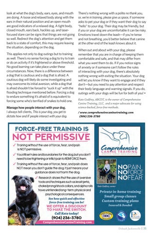Page 31 of SHOULD you bring your dog, just because you CAN?