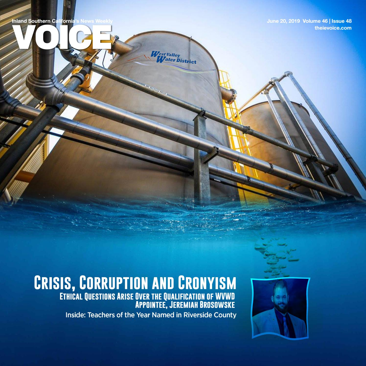 VOICE Issue June 20, 2019 by Brown Publishing Co - issuu