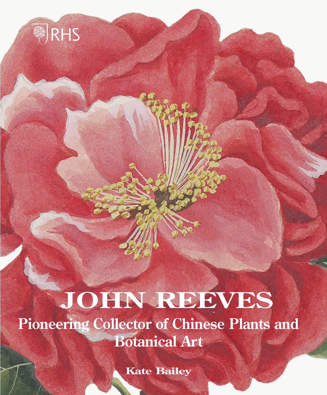 54 Pages How To Paint Different Lovely Detail Peony Chinese Painting Book