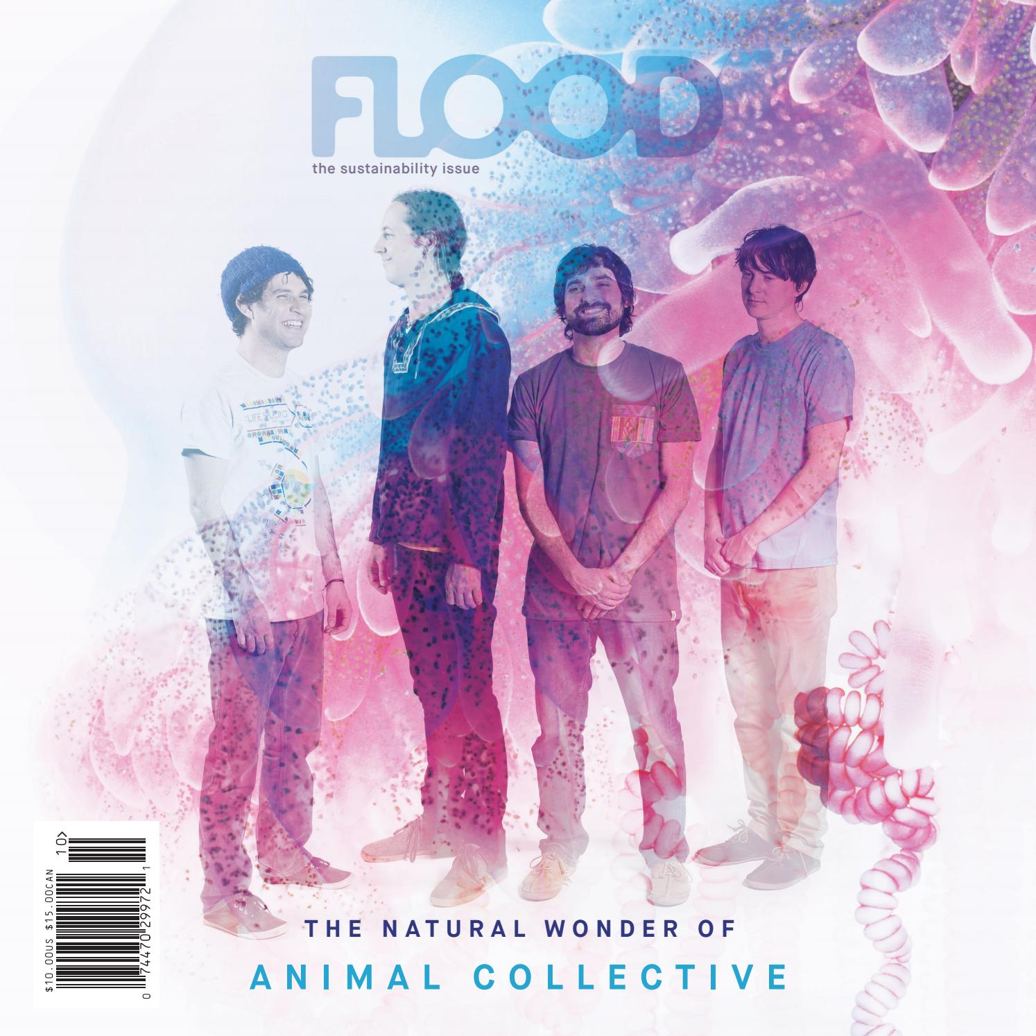 FLOOD 10 — SIDE A — Animal Collective Version by FLOOD