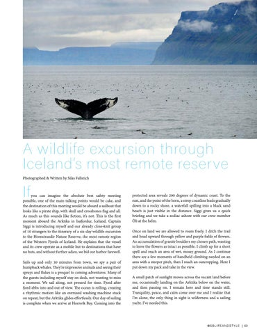 Page 69 of Fjord Safari