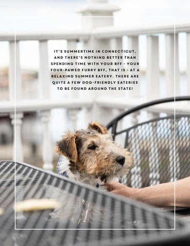 Page 149 of Pup-Friendly Eateries