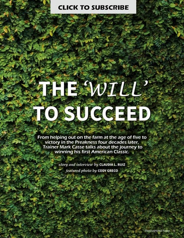 Page 5 of Mark Casse: The Will to Succeed