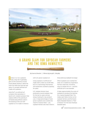 Page 41 of Homegrown Homeruns