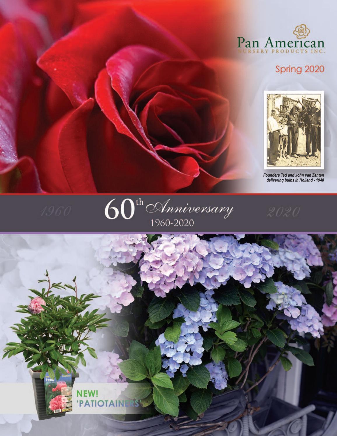 2020 Nursery Catalogue By Pan American Nursery Issuu