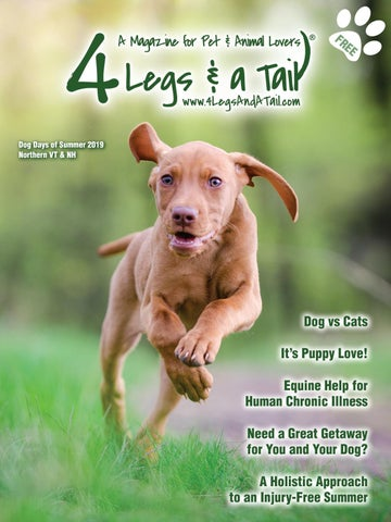 4 Legs & A Tail North Summer 2019 by 4 Legs & a Tail - issuu