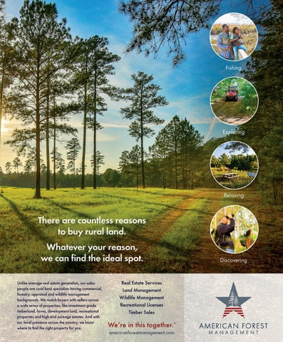 Page 21 of LAND Insider