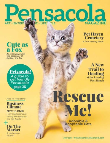 Pensacola Magazine, July 2019 by Ballinger Publishing - issuu