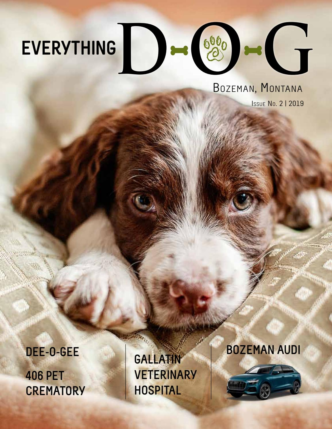 2019 Everything D-O-G! by Rey Advertising - issuu
