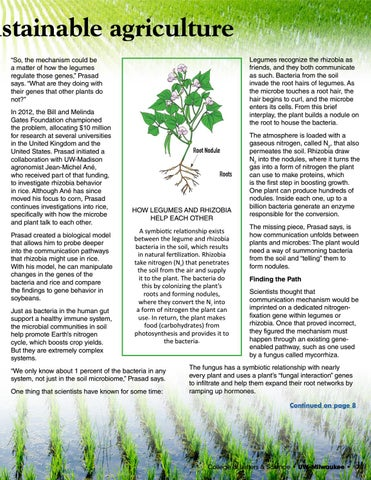 Page 7 of Food for thought on sustainable agriculture